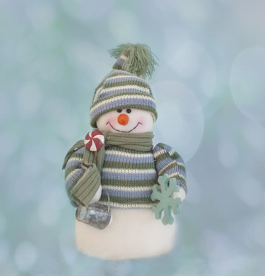 Christmas Card Photograph - Its A Holly Jolly Christmas by Kim Hojnacki