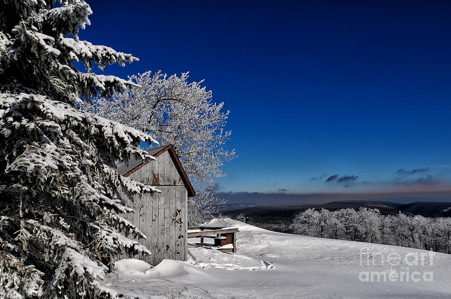 Snow Photograph - Its Got A Million Dollar View by Lois Bryan