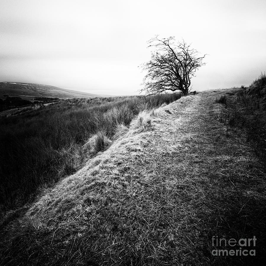 High Contrast Photograph - Its Hard To Imagine by John Farnan
