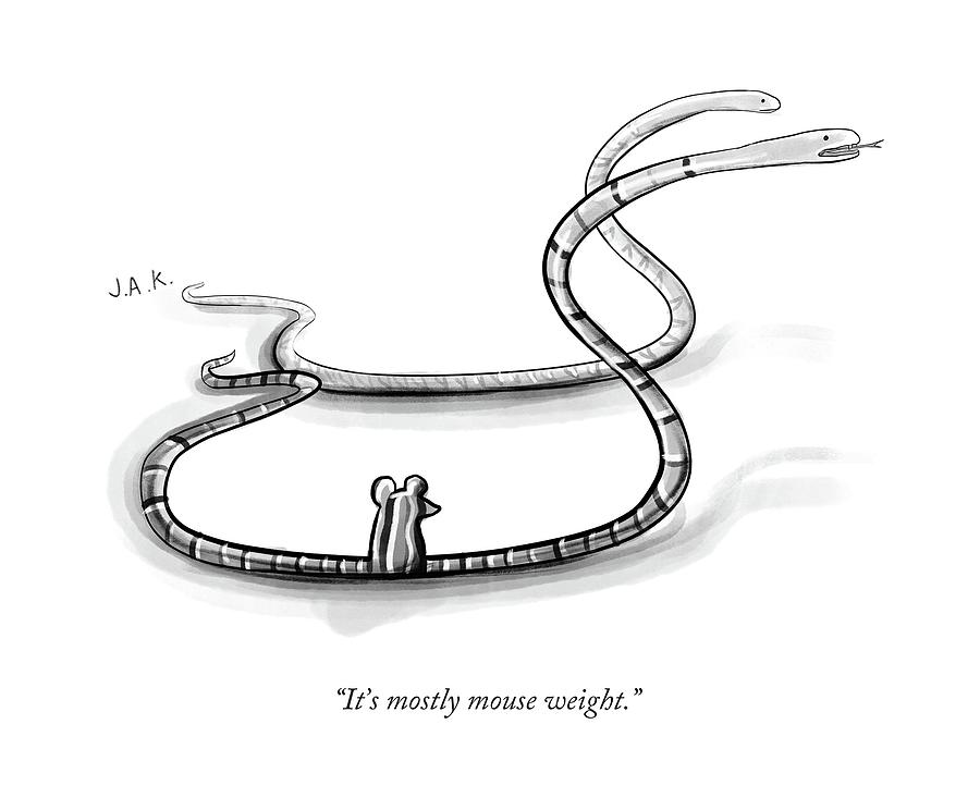 Its Mostly Mouse Weight Drawing by Jason Adam Katzenstein