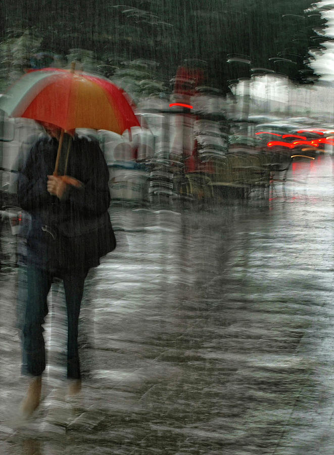 Street Photograph - Its Raining Cats And Dogs by Yvette Depaepe