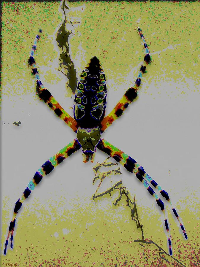 Spider Digital Art - Itsy Bitsy Spider by Rebecca Flaig