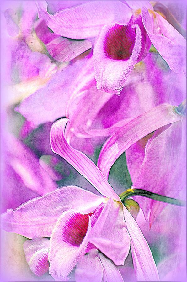 Purple Photograph - Ive Got You Babe...... by Tanya Tanski