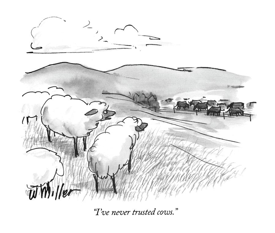 Ive Never Trusted Cows Drawing by Warren Miller