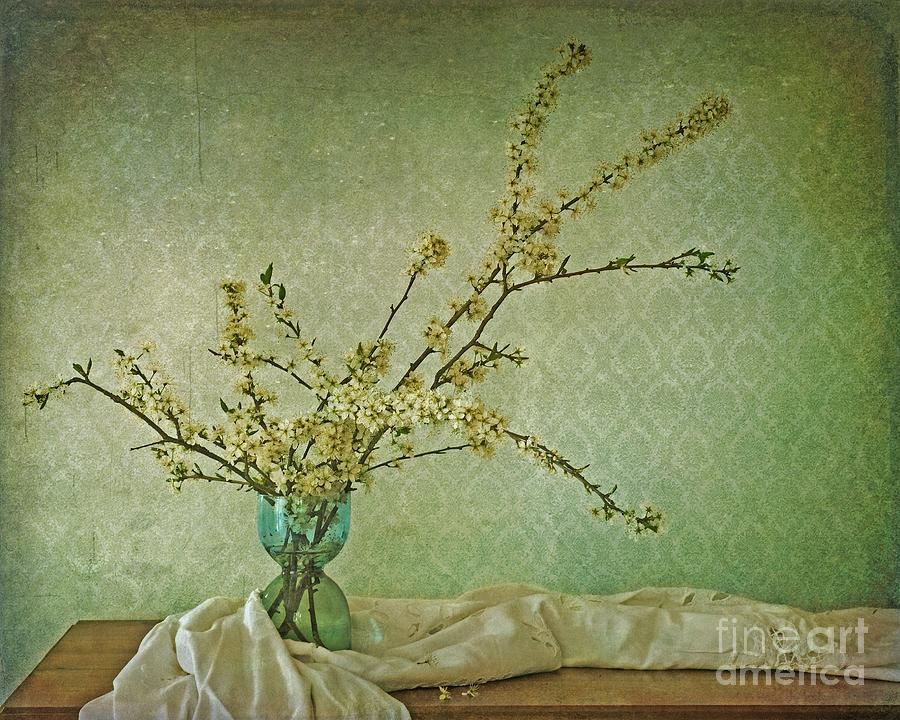 Blossoms Photograph - Ivory And Turquoise by Priska Wettstein