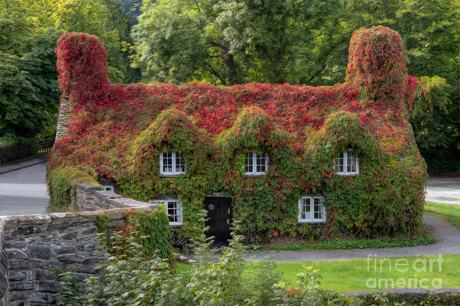 15th Century Photograph - Ivy Cottage by Adrian Evans