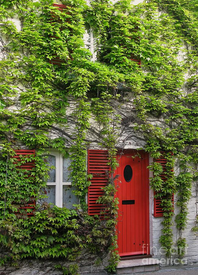 Ivy Photograph - Ivy Cottage by Ann Horn