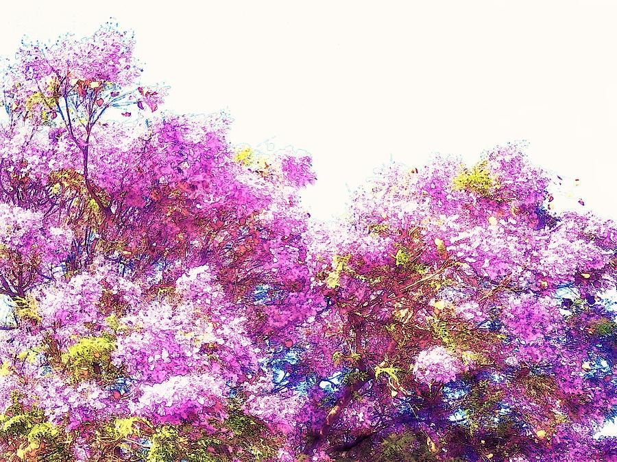 Bright Mixed Media - Jacaranda by Candee Lucas