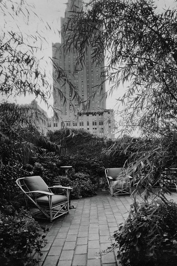 Jack Littles Garden In New York City Photograph by A E Boutrelle