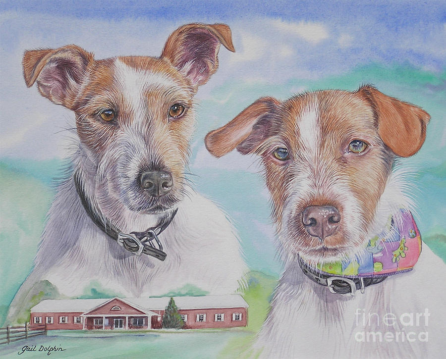 Jack Russell Terriers Painting by Gail Dolphin