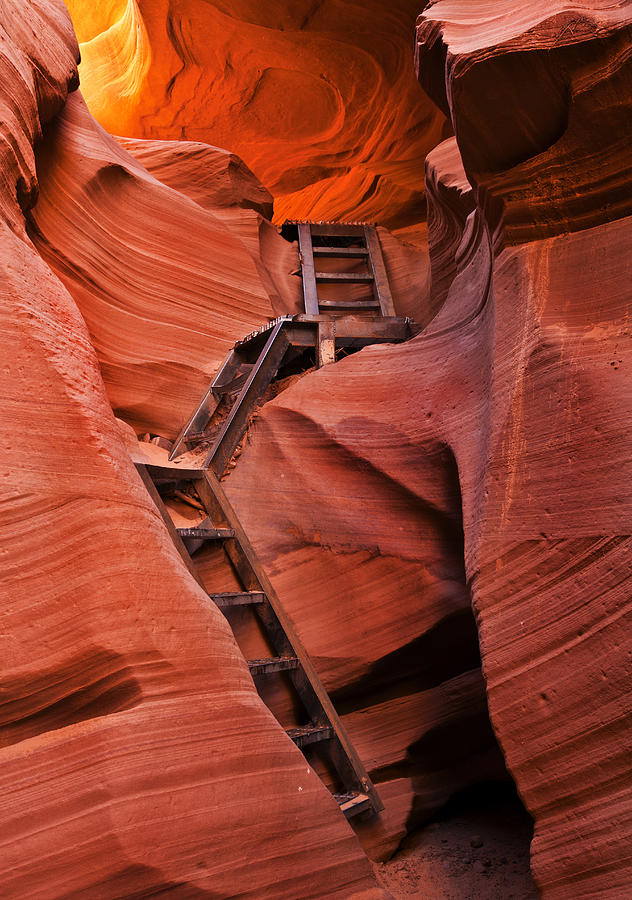Ladder Photograph - Jacobs Ladder by Mike  Dawson