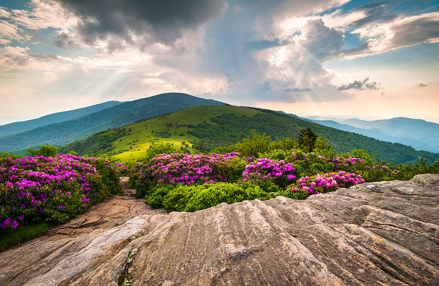 Mountains Photograph - North Carolina Blue Ridge Mountains Landscape Jane Bald Appalachian Trail by Dave Allen