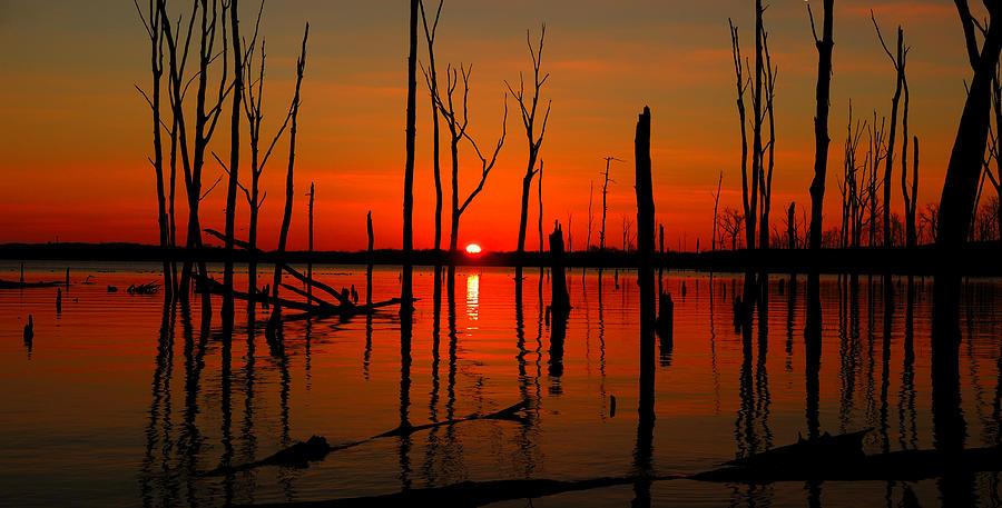 Manasquan Reservoir Photograph - January Sunrise by Raymond Salani III