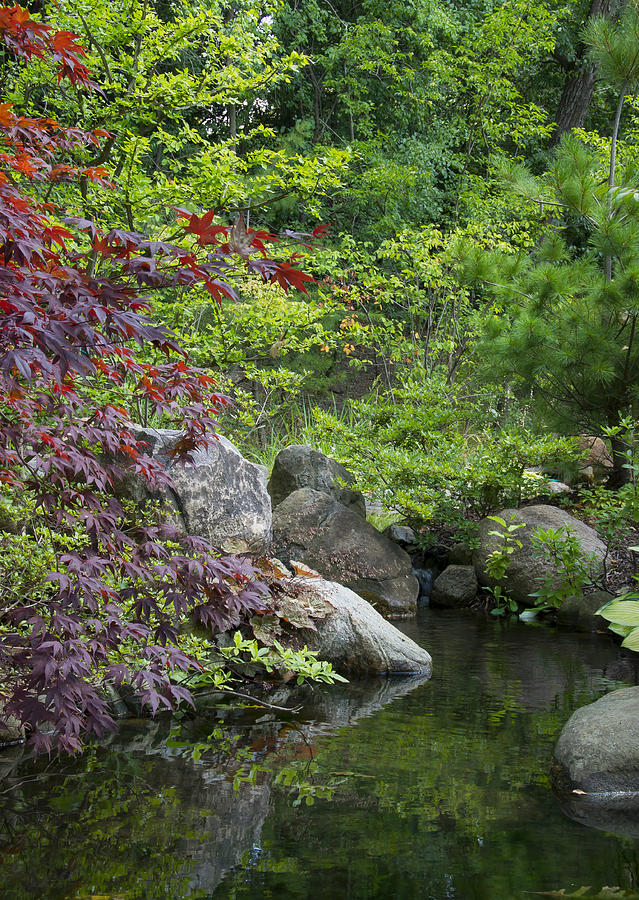 Japanese Garden by Larry Bohlin