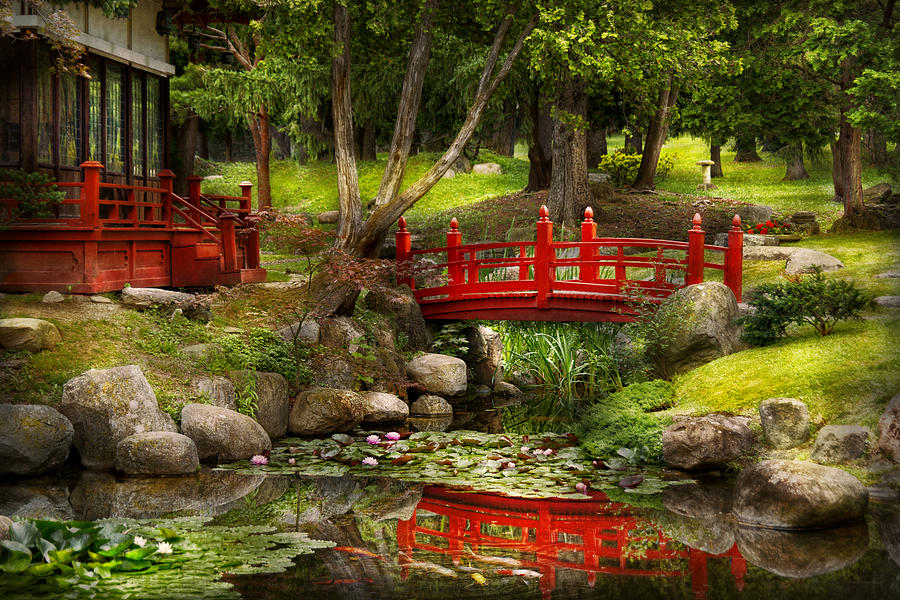 Chinese gardens bridge - Japanese Garden Meditation Photograph By Mike Savad
