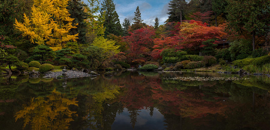 Seattle Photograph - Japanese Garden Reflection by Mike Reid
