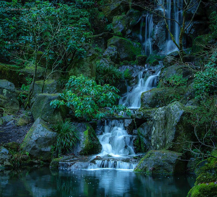 Japanese Garden Serenity 1 Photograph