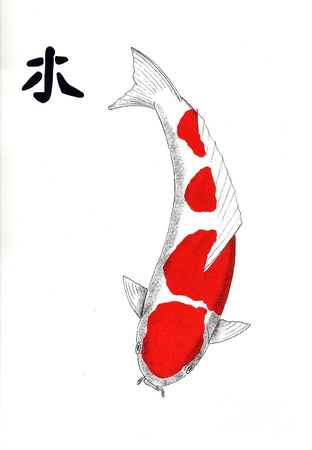 Japanese Koi Utsuri Mono and Showa Sanke 20 painting ... |Japanese Koi Painting