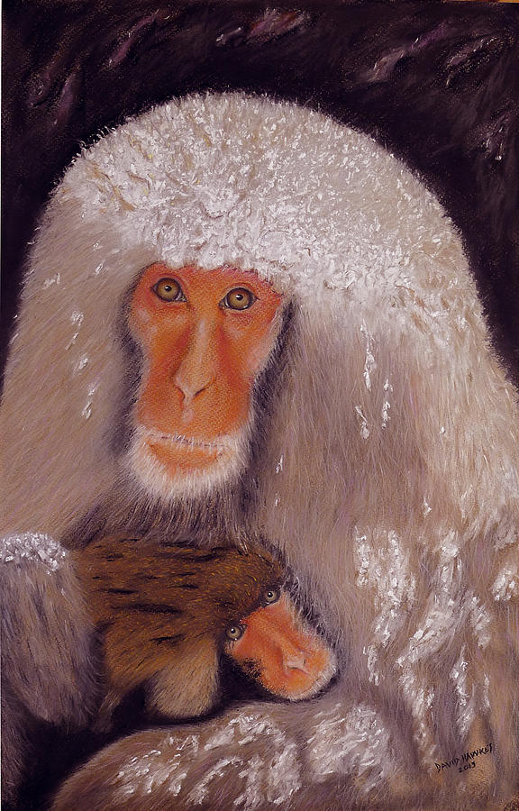 Monkey Painting - Japanese Snow Monkey by David Hawkes