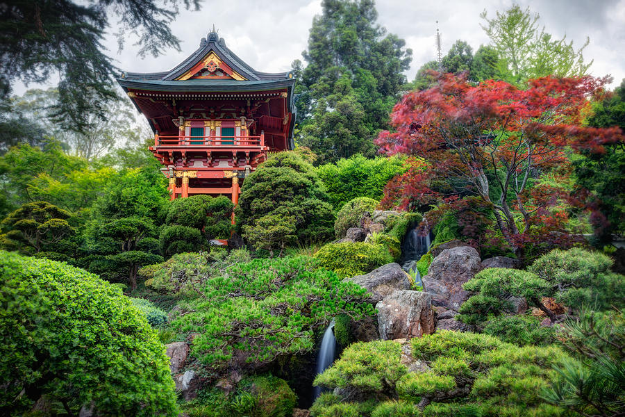 3scape photograph japanese tea garden golden gate park by adam romanowicz - Golden Gate Park Japanese Tea Garden