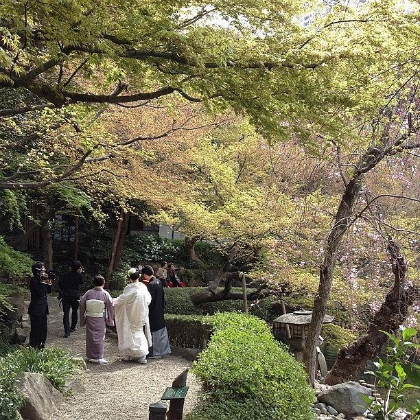 Japan Photograph - #japan#garden#landscape Happyday by Tokyo Sanpopo