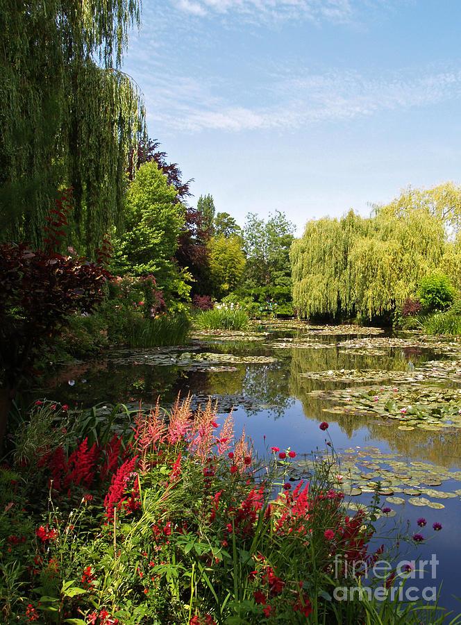 Landscape Photograph - Jardin Deau by Alex Cassels