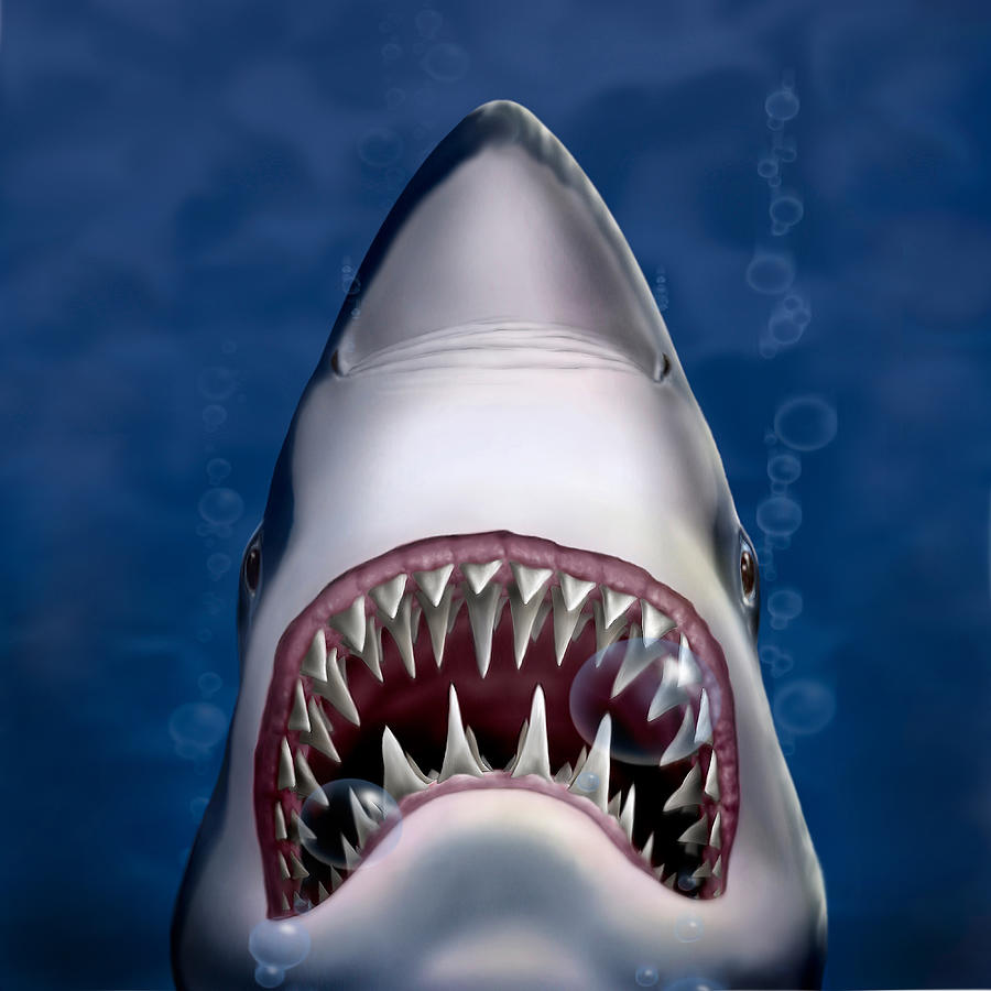 Jaws Great White Shark Art - Square Format Digital Art by ...  Great White Shark Painting