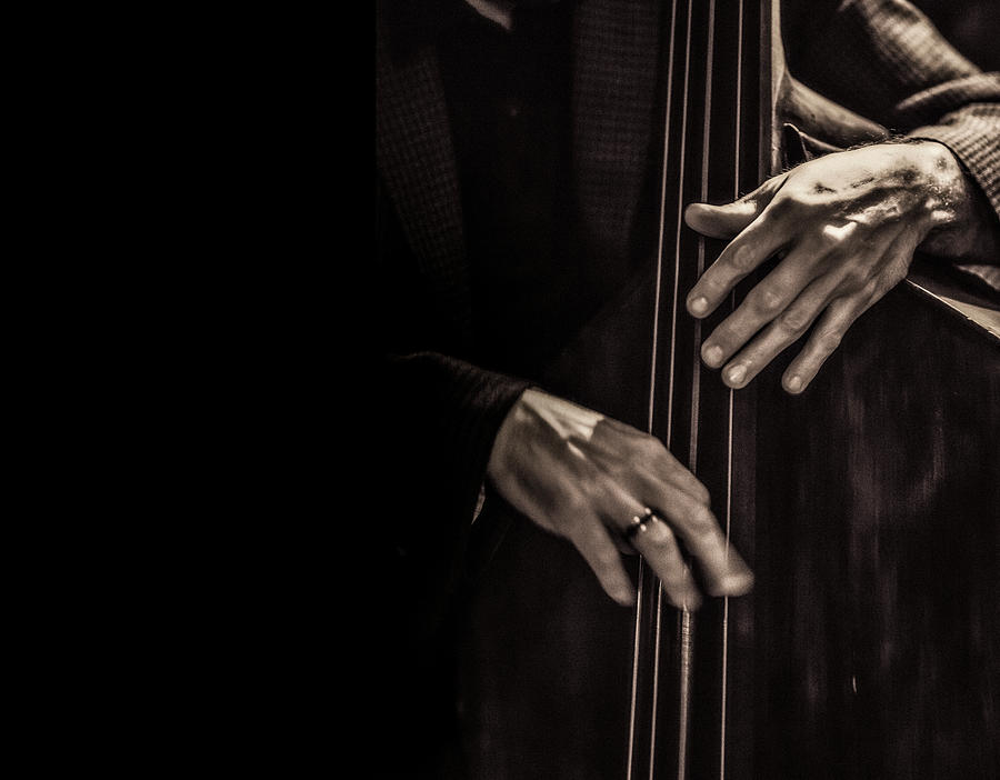 Jazz Musician Photograph by Instants