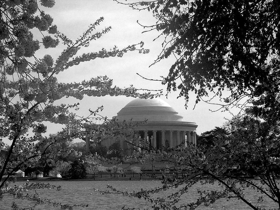Jefferson Memorial Photograph by Kimber  Butler