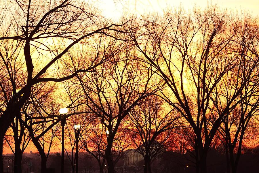 America Photograph - Jefferson Memorial - Washington Dc - 01135 by DC Photographer