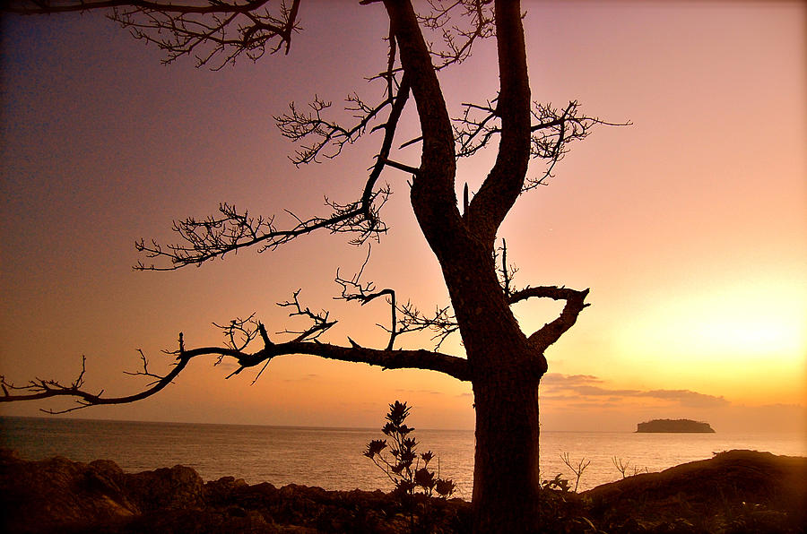 Beautiful Sunset Photograph - Jeju Sunset by Yen