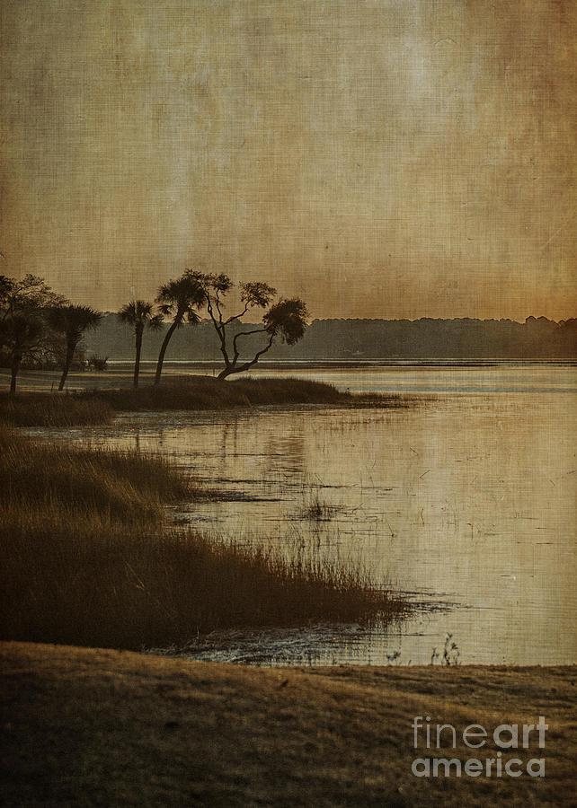 Dawn Photograph - Jenkins Creek Dawn by Terry Rowe