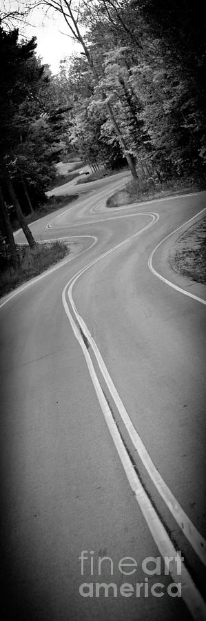 Door County Photograph - Jensens Long Road by Ever-Curious Photography
