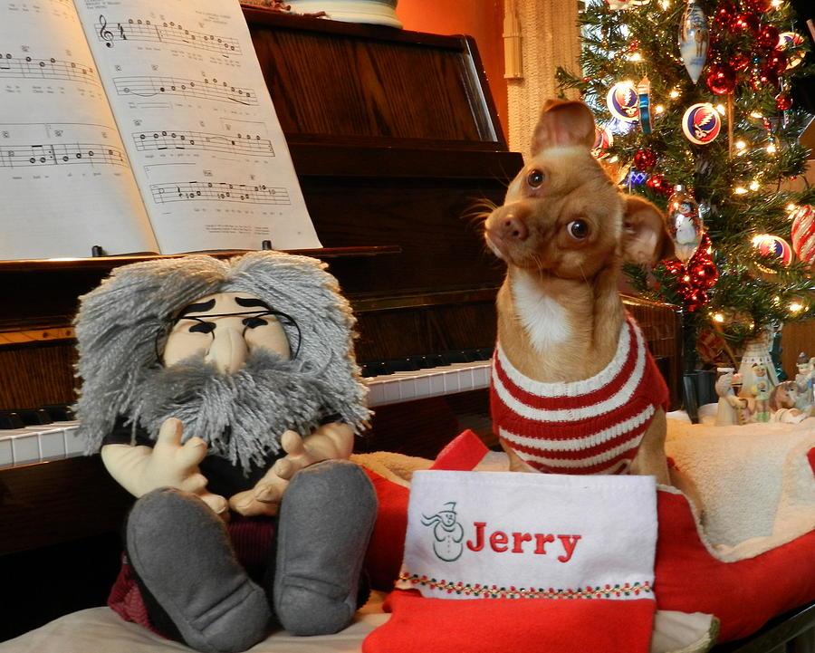 Jerry Christmas Photograph by Bruce Brandli