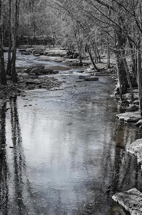 Spring Photograph - Jessamine Creek by Diana Boyd
