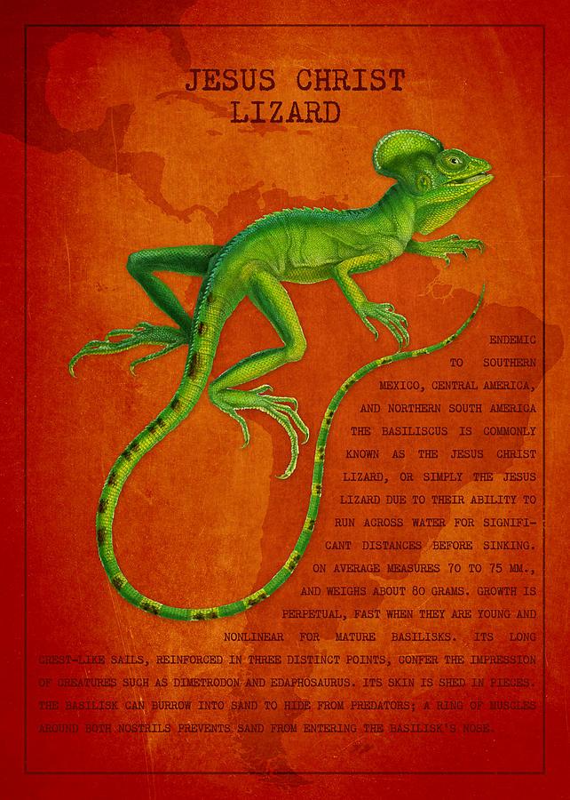 Lizard Digital Art - Jesus Lizard by Aged Pixel
