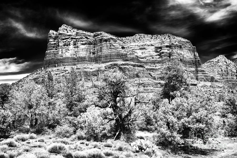 Clouds Photograph - Jewel In The Desert by John Rizzuto