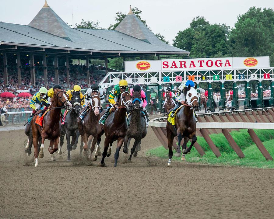 Jim Dandy Stakes Photograph