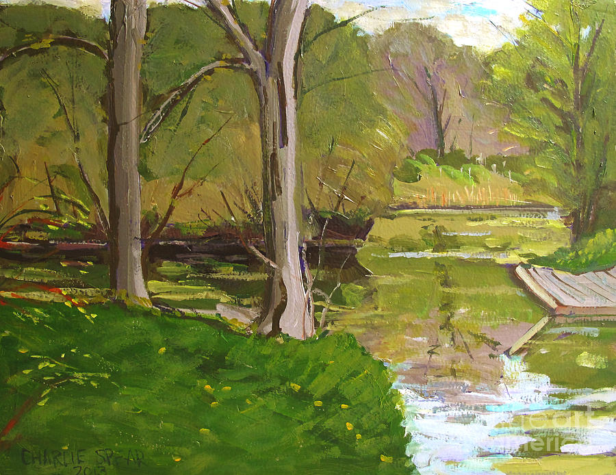 Plein Air Painting - Jim Raders Pond Am by Charlie Spear