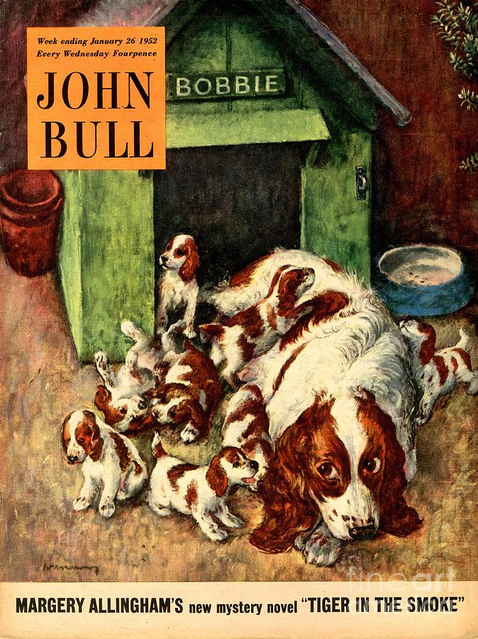 1950s Drawing - John Bull 1952 1950s Uk Dogs Puppies by The Advertising Archives