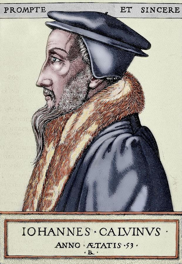 16th Century Photograph - John Calvin (1509-1564 by Prisma Archivo