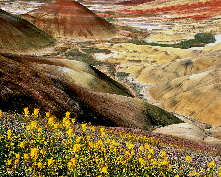 John Day Painted Hills Oregon by Ed  Riche