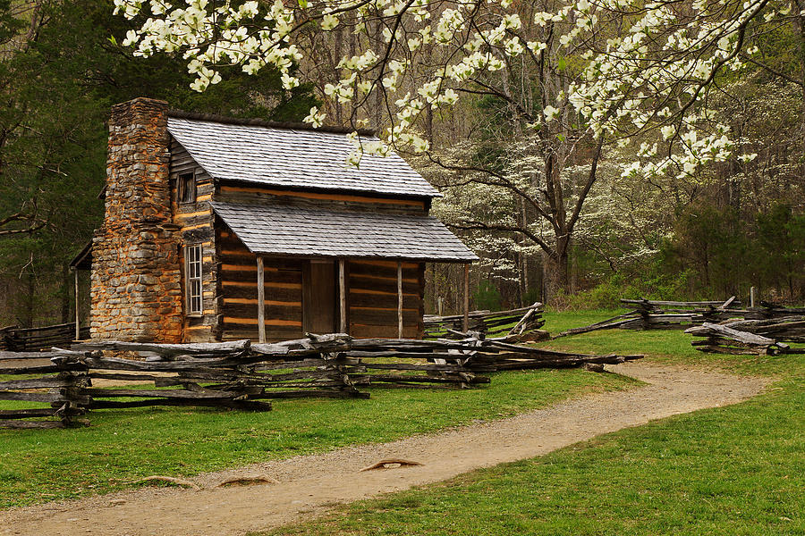 Smoky Mountains Photograph - John Oliver Cabin In Spring by Deb Campbell