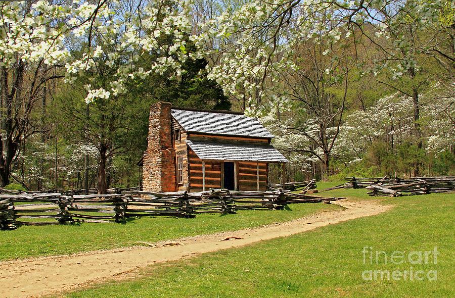 Cabin Photograph - John Olivers Cabin by Geraldine DeBoer