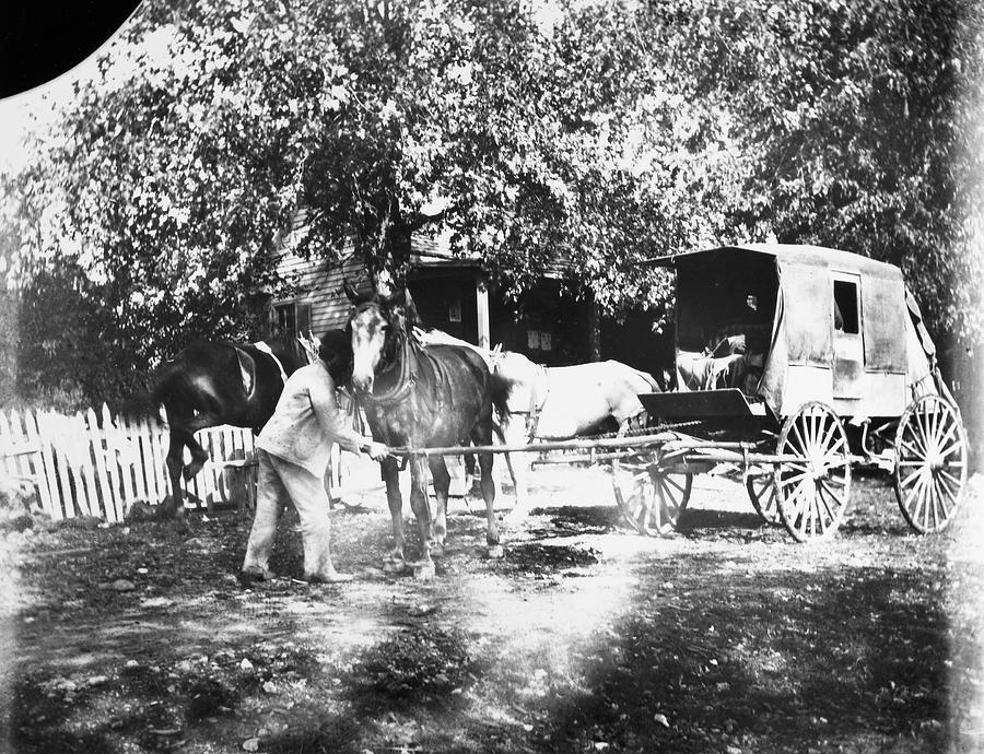 1890 Photograph - Johnston Horse Wagon by Granger