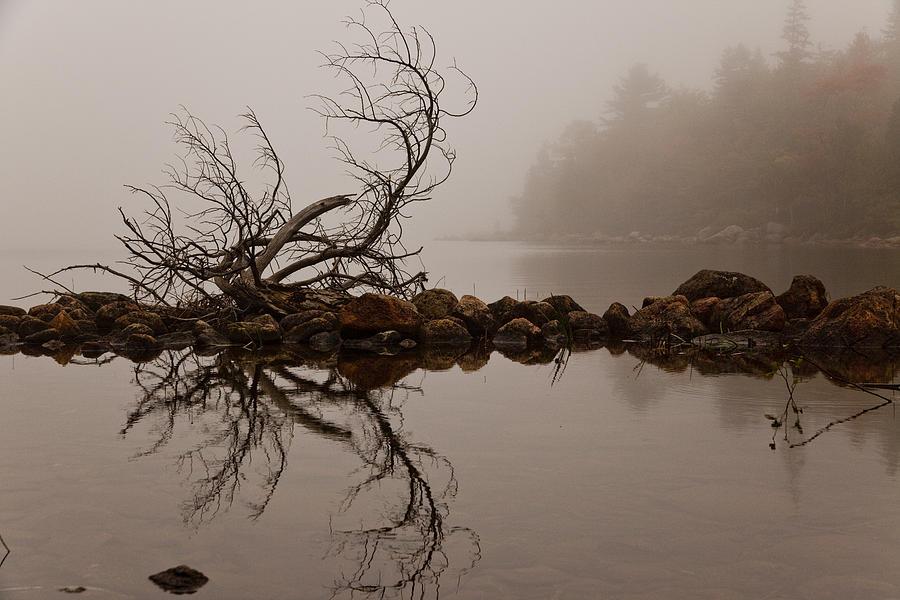 Jordan Pond Photograph - Jordan Pond by Karma Boyer