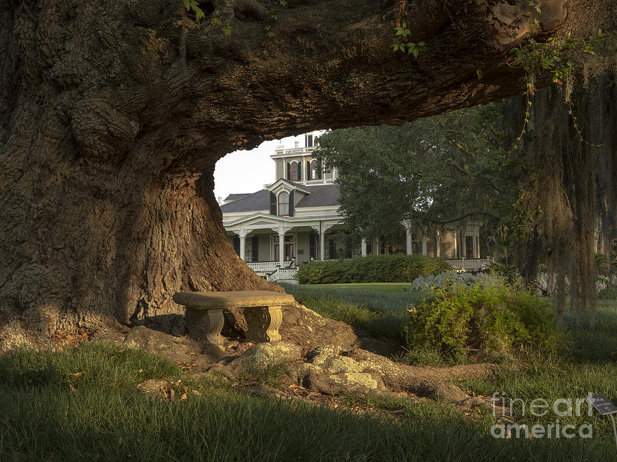 Cleveland Oak Photograph - Joseph Jefferson Home by Kelly Morvant