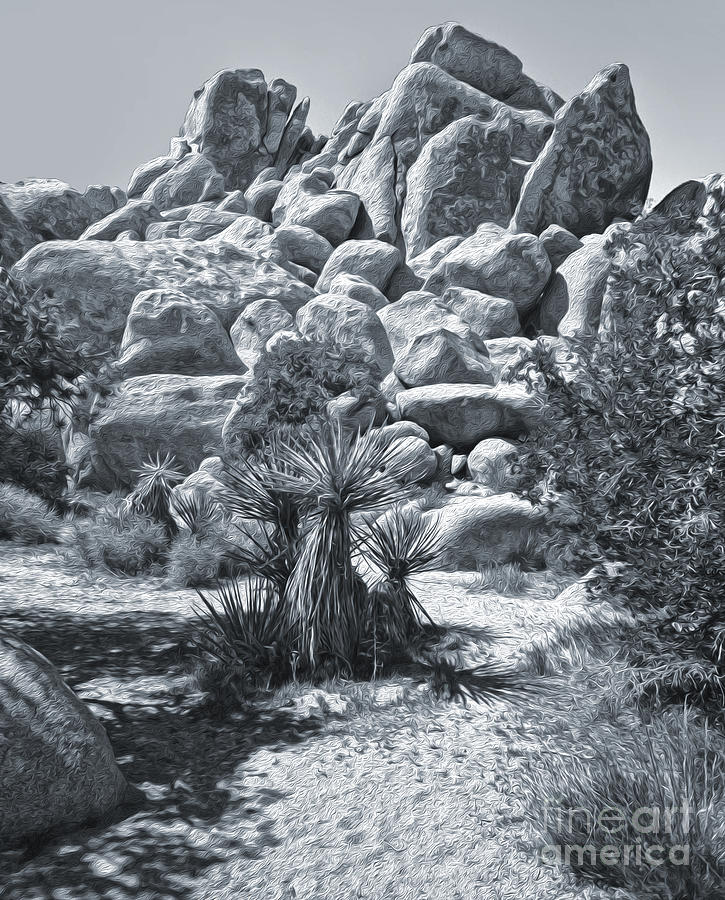 Joshua Tree Photograph - Joshua Tree - 09 by Gregory Dyer
