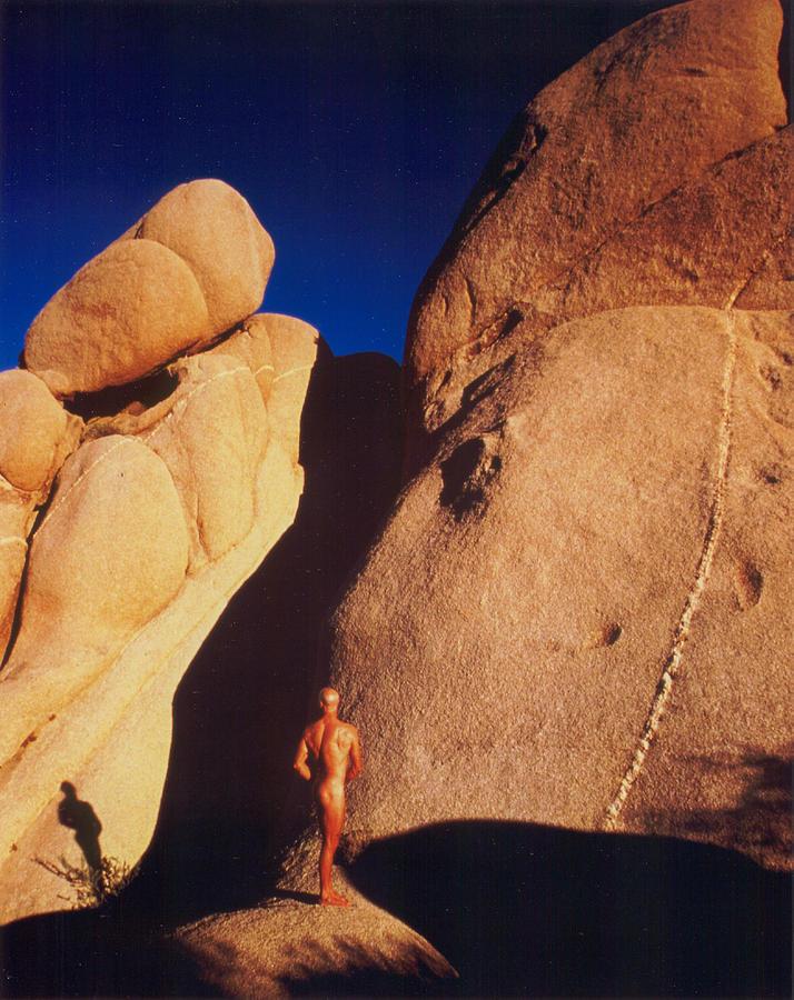 Arizona Photograph - Joshua Tree 2 by Sean LungMyers