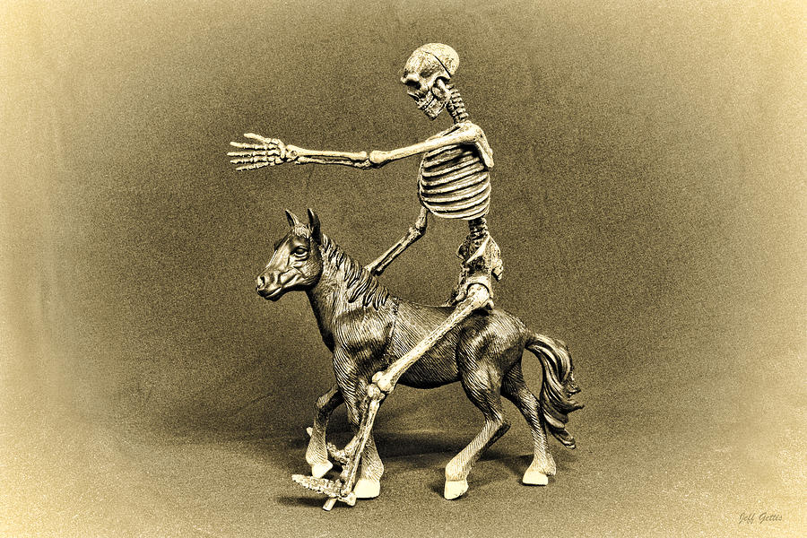 Skeletons Photograph - Journey With An Ass by Jeff  Gettis